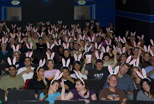 Rabbit_Fever